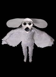 Angel - Tilda Lovell